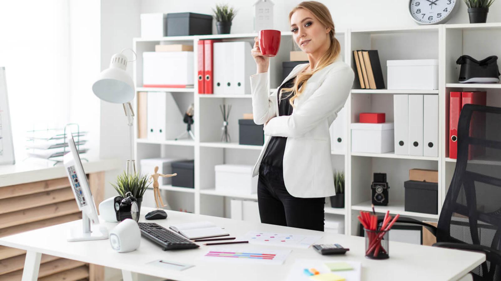 WebDFe - Como organizar uma empresa em 6 passos